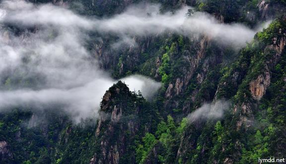临安+大明山+神龙川+指南山+青山湖绿道+农家含餐3天2晚跟团游