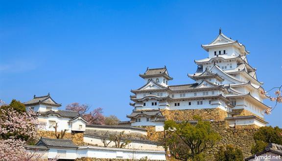 """皇家加勒比""""海洋光谱号"""" 上海-大阪-神户-东京(横滨)-上海 7 晚 8 天"""