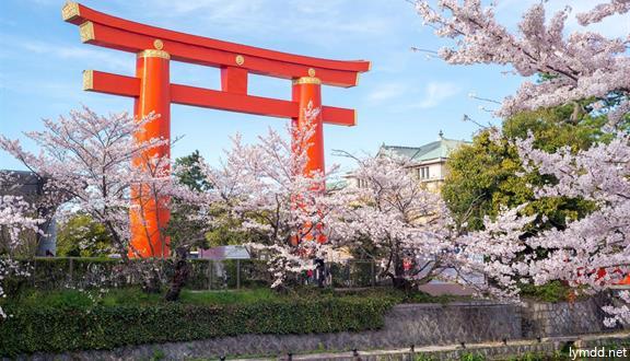 【惠玩】日本大阪京都富士山東京6日