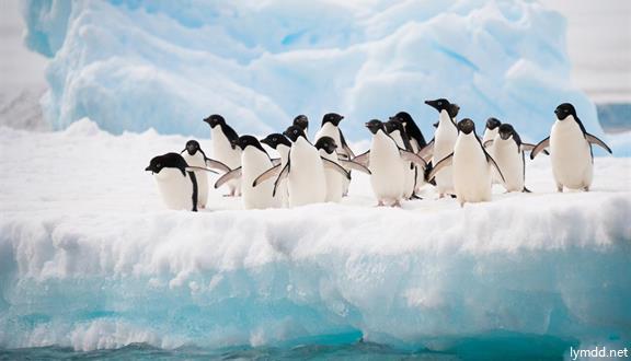 """智利(百内国家公园)""""飞跃南极""""经典海空联航15天"""