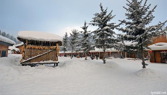 【40周年庆】【惠玩】黑龙江哈尔滨冰雪大世界、中国雪乡、亚布力旅游度假区双飞5日
