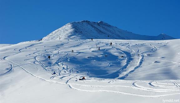 【新年親子】日本長野滑雪8日