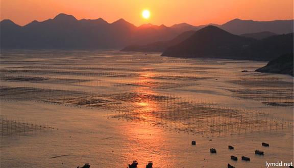 福建霞浦滩涂+太姥山+嵛山岛+榕枫公园4日3晚跟ope体育app下载