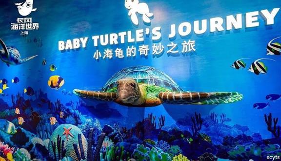 【随心系列】OMG89元抢原价180元上海长风海洋世界成人票!